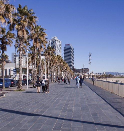 free bike tour barcelona barceloneta